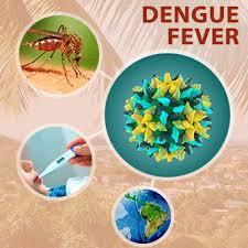 HSA: cập nhật thông tin về vắc xin Dengvaxia®